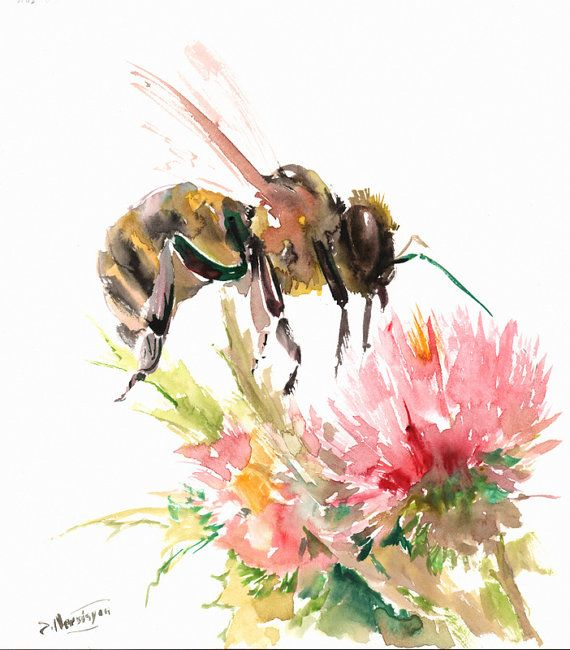 Bee and flower water color
